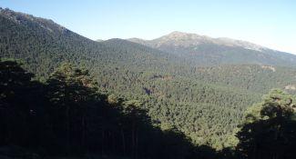 Siete_Picos_y_Montón_de_Trigo 2