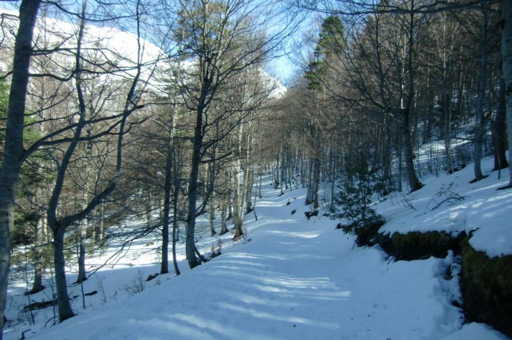 Valle de Hecho 10
