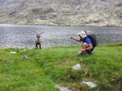 Trekking - Vivac 3 días/2 noches - Verano - 75 € ( Consultar fechas )